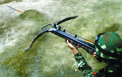猎豹眼镜蛇弓弩图片
