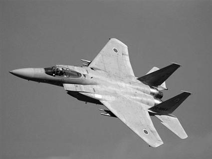 f15纸模型飞机图纸