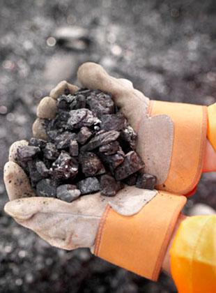 动力煤期货登陆郑州商品交易所