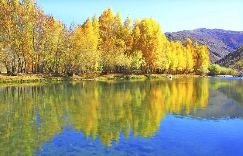 刘新海   秋天的阿勒泰,正是千种风情,万般风韵之时。适逢国庆节大假,着有着千里画廊之称的阿勒泰,也迎来了最为绚丽多彩的季节。金秋时节游金山,游在画中,乐在其中,美在心中。 阿勒泰地区位于新疆北部,阿尔泰山横亘其北,额尔齐斯河、乌伦古河并流其间,喀纳斯湖、乌伦古湖、三道海子等镶嵌其中,旅游资源极其丰富。高山冰川、森林草原、河流湖泊、温泉湿地、沙漠戈壁等,种类齐全。以阿尔泰山为主体的自然风光,形态丰富,风格不一,天生丽质,奇美独特。在自东向西的千里风光带上,依次分布着草原秘境三道海子、地质奇观可可托海