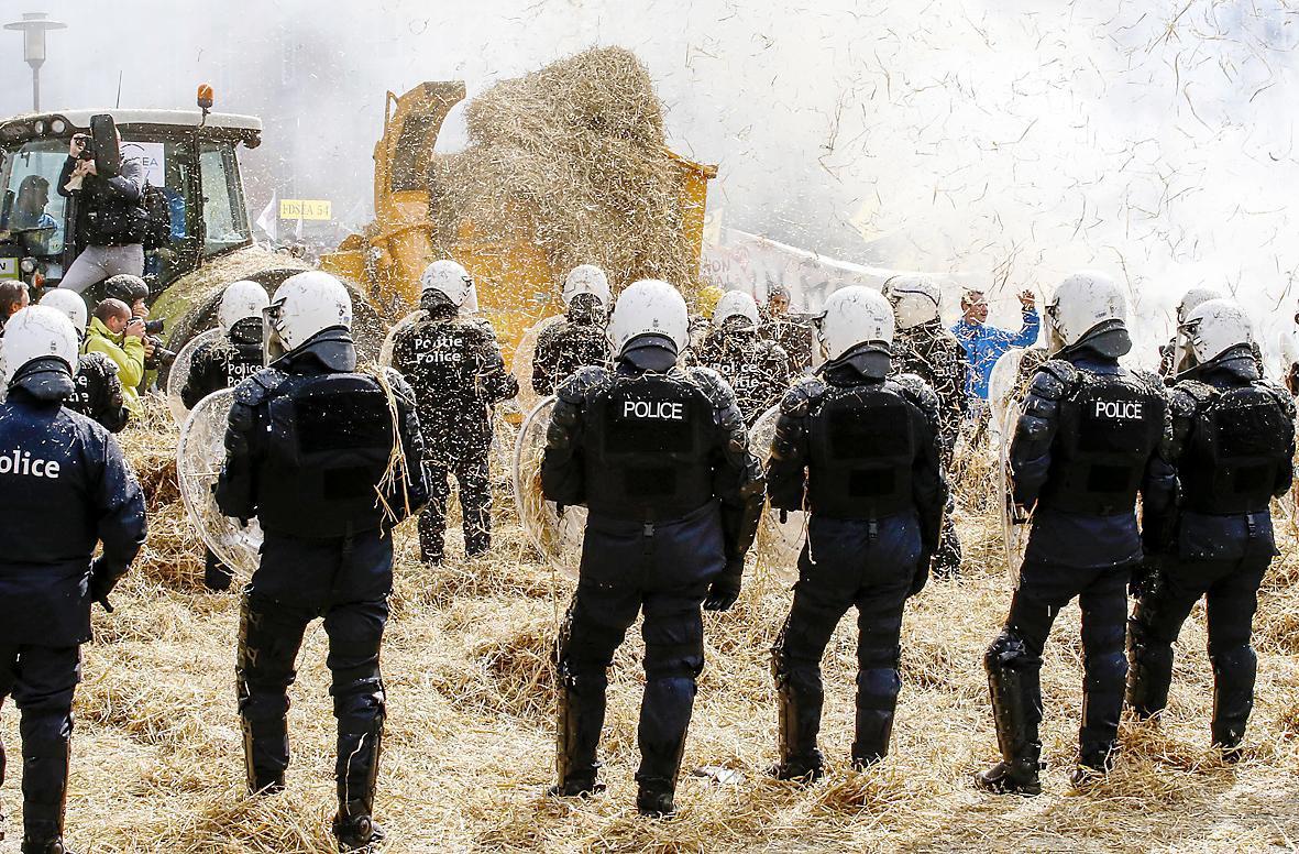 牛奶肉价太低 欧洲农民上街抗议图片