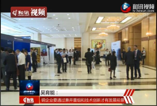 吴育能:铜企业要通过兼并重组和技术创新才有发展前景